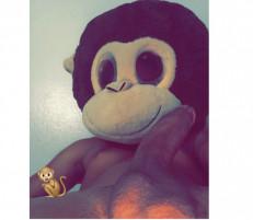 MonkeyBizness